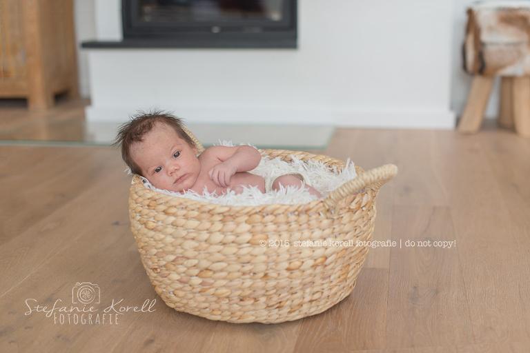 Babyfotografin Eberdingen, www.babyfotografin-stuttgart.de